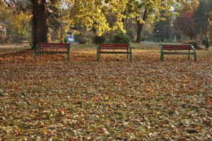 Three Benches by dardaniM