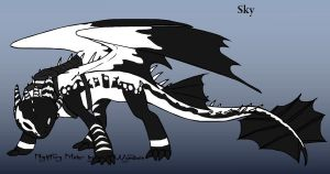 Sky The Night Fury by Cool-Ally