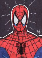 SPIDER-MAN SKETCHCARD by WM4ART