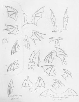 Petit Bat Wing Sketches by BUdraw-81