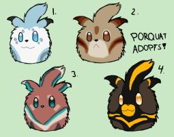 Porquat Adopts 1 - OPEN by SteamMouse