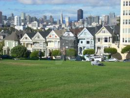 Painted Ladies by donna-j