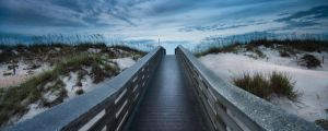 The Path by RyanHeffron