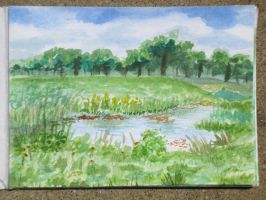 watercolor study study at running bear park 6-6-13 by xensoldier