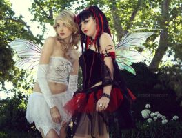 faeries by fae-photography