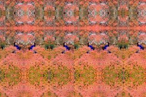 She Is The Fire Symmetrical Stereo Version by aegiandyad