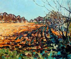 Field in early Autumn Light by Art-deWhill