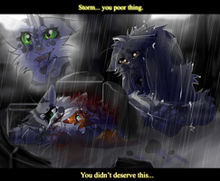 Storm's Death (Warrior Cats) by WarriorCat3042