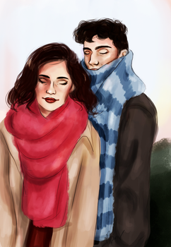 Scarves by verinegre