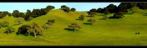 More Rolling Hills by Mac-Wiz