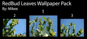RedBud Leaves Wallpaper Pack by mikee99