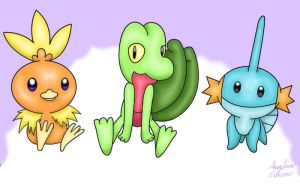 Pokemon starters Hoenn by ShadowSilverfan1997