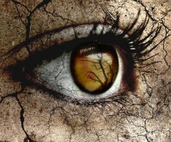 i see decay all around me by Never-let-me-go