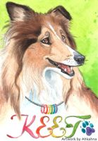 Keet Collie conbadge by Ahkahna