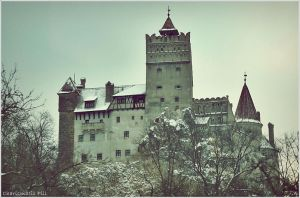 Dracula's Castle by CharismaticPill