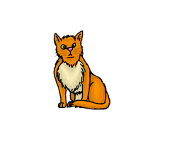 Orange Cat by dragonfriendhaj