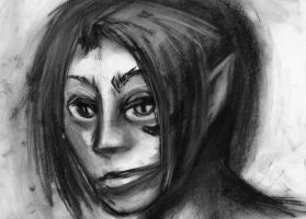 Hezubah Charcoal by GrimCareBear