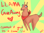 Llama Giveaway by Little-Miss-Boxie