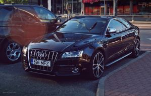Audi S5 Coupe with a ABT package by ShadowPhotography