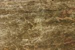structured wood texture by WingsOfKaviel