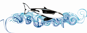 Orca T-Shirt Design by Heart-of-Amethyst