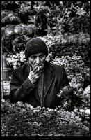 Some Flowers? by PortraitOfaLife