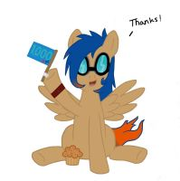 A Brony's thanks for the 1000 by Muffinsforever