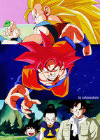 Son Goku - DragonBall Super by salvamakoto