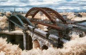 The Bridges by Wayman