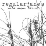Brush Wild Mess x1 by regularjane