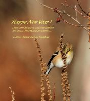Happy New Year wishes by natureguy
