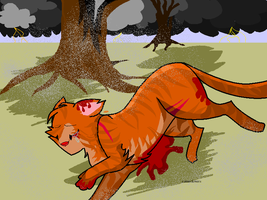 Firestar's Death by CameoLovers