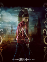 Harry Potter by NastyaSolovova