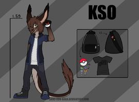 Kso (furry) referense sheet 2014 by Shiki-kun-baka