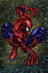 Amazing Spider-man  Colored by likwidlead