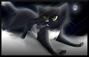 Ravenpaw by CookiemonsterMS