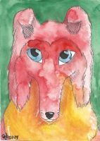 Red Collie by Aryncoryn