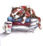 cats and books no. 3 by cherryclaires