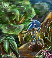 _The Hedgehog and the ring_ by AmytheRose