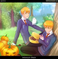 Weasley Bros by walterka