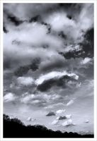Silken Clouds by neoweb