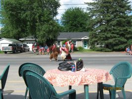 Canada Day - Alpaca on Parade by ChapterAquila92