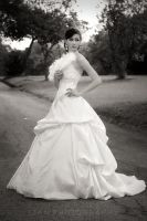 Bridal Gown Photoshoot 2 by Shooter1970