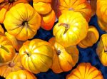 Pantheistic Pumpkins by PaintMyWorldRainbow