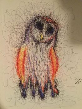 Pen drawn Owl by ColorfulReaper
