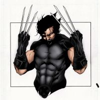 x force wolverine by Matt Slay(colors) by wburton19