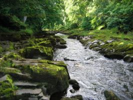 The Strid by birchley