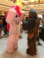 Pinkie and Chewie by farondk