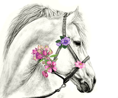 Mare with Flowers by illi33