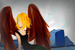 Maximum Ride by catseathedevil